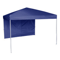 World Famous Sports Oasis 10' x 10' Lighted Canopy