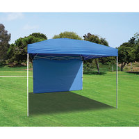 Golden Bear Mission 10' x 10' Canopy with Wall and Weight Bags